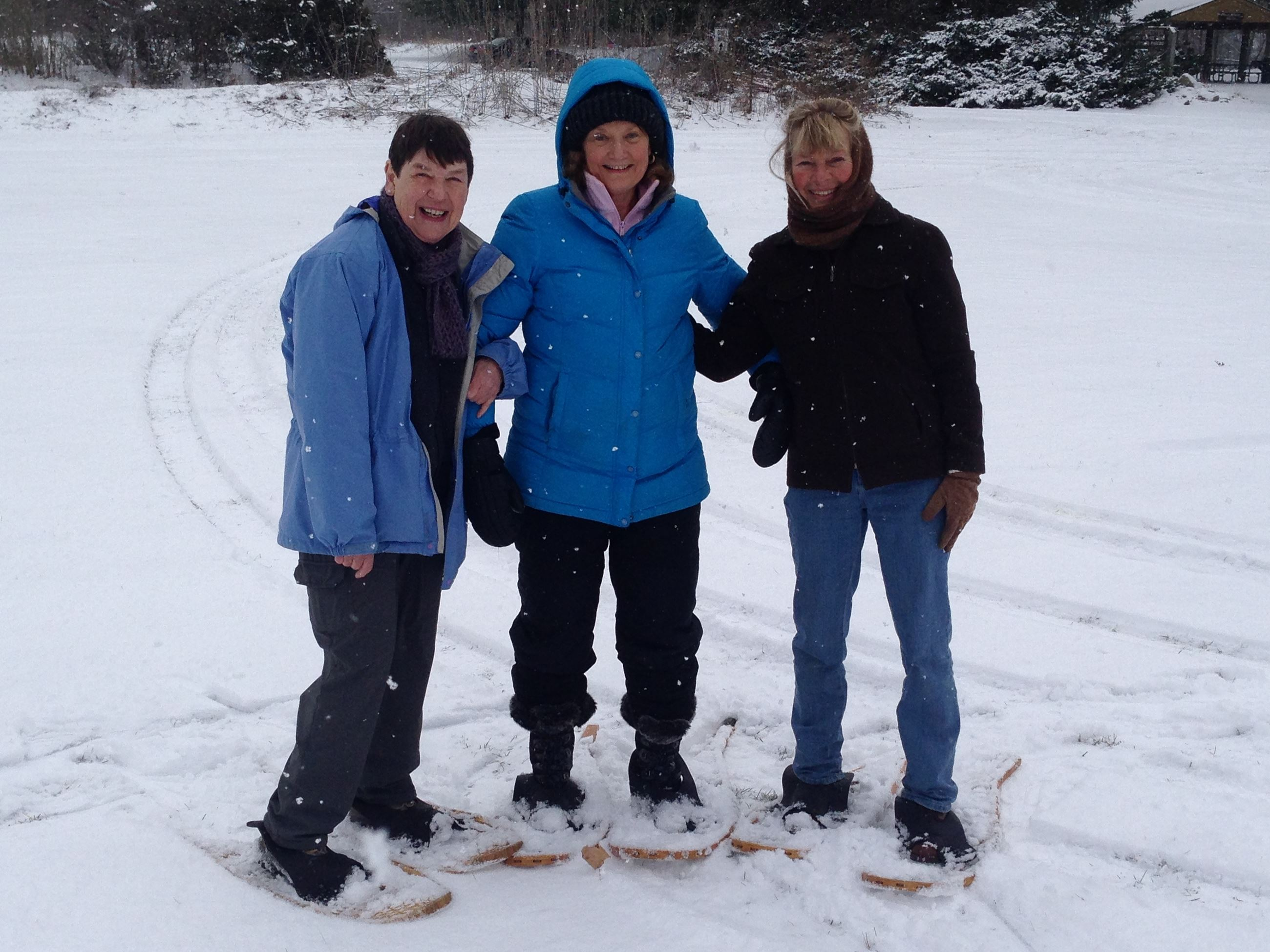 snowshoers at the park