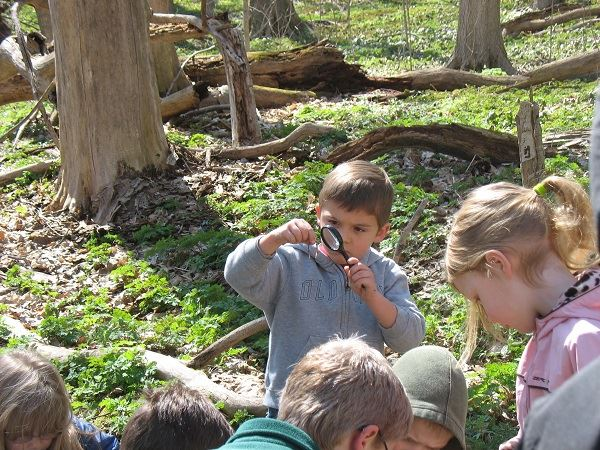 boy checks out worm, spring exploration