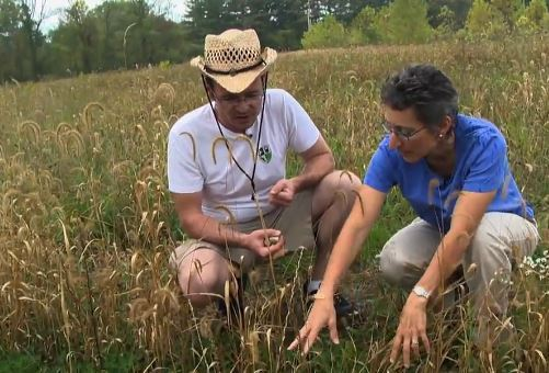 Dr. Diogo Bolster discusses his research with parks director